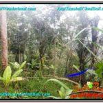 Exotic 3,000 m2 LAND SALE IN UBUD BALI TJUB617