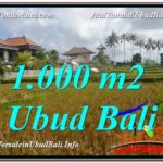 Exotic 1,000 m2 LAND FOR SALE IN UBUD BALI TJUB618