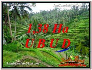 FOR SALE Affordable PROPERTY 13,800 m2 LAND IN UBUD BALI TJUB590