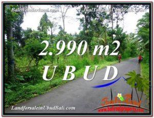 Exotic PROPERTY 2,990 m2 LAND SALE IN Ubud Tegalalang TJUB591