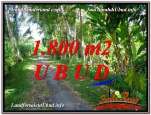 Affordable LAND FOR SALE IN UBUD TJUB597