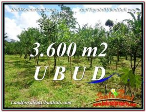 Exotic LAND IN UBUD FOR SALE TJUB599