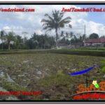 Magnificent 2,400 m2 LAND IN UBUD BALI FOR SALE TJUB620