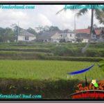 Beautiful 600 m2 LAND FOR SALE IN Ubud Pejeng TJUB621