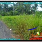 Exotic PROPERTY LAND IN UBUD FOR SALE TJUB622