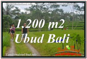 Affordable PROPERTY 1,200 m2 LAND SALE IN UBUD BALI TJUB624