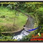 Magnificent PROPERTY 2,000 m2 LAND SALE IN Ubud Pejeng TJUB625