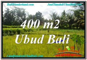 Magnificent PROPERTY 400 m2 LAND SALE IN Ubud Pejeng TJUB627