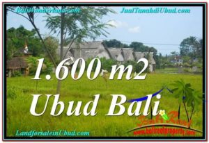 Exotic 1,600 m2 LAND SALE IN UBUD BALI TJUB633