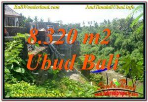 FOR SALE Magnificent 8,320 m2 LAND IN UBUD BALI TJUB635