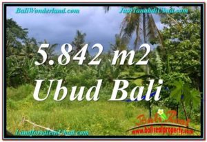 Magnificent Sentral / Ubud Center BALI LAND FOR SALE TJUB638