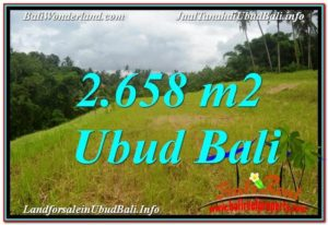 Exotic PROPERTY UBUD LAND FOR SALE TJUB641