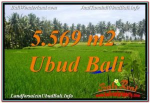 FOR SALE Magnificent PROPERTY 5,569 m2 LAND IN UBUD BALI TJUB642