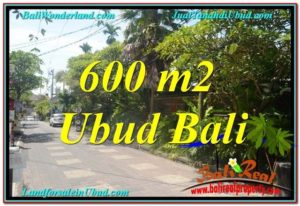 Magnificent PROPERTY LAND FOR SALE IN UBUD TJUB644