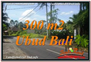 Magnificent PROPERTY LAND FOR SALE IN UBUD TJUB646