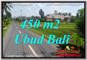 450 m2 LAND FOR SALE IN UBUD BALI TJUB647