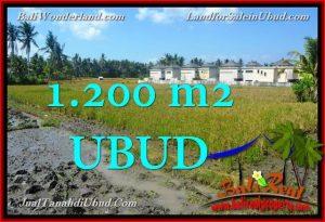 Affordable 1,200 m2 LAND FOR SALE IN UBUD BALI TJUB663