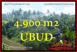 Exotic 4,900 m2 LAND IN UBUD BALI FOR SALE TJUB665