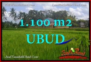 FOR SALE Magnificent LAND IN Ubud Pejeng BALI TJUB651