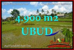 Exotic UBUD 4,900 m2 LAND FOR SALE TJUB652
