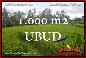 Affordable PROPERTY LAND FOR SALE IN UBUD TJUB653