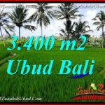 Exotic PROPERTY LAND IN Ubud Pejeng BALI FOR SALE TJUB656