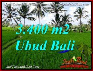 Exotic PROPERTY LAND IN Ubud Pejeng BALI FOR SALE TJUB656