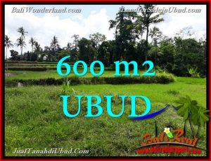 Magnificent PROPERTY UBUD LAND FOR SALE TJUB657