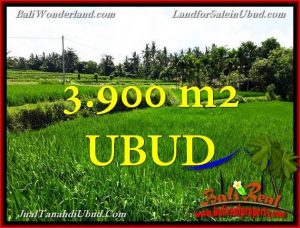Affordable PROPERTY 3,900 m2 LAND FOR SALE IN UBUD BALI TJUB658