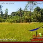 Affordable UBUD BALI 4,000 m2 LAND FOR SALE TJUB661
