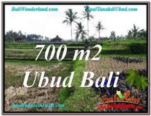 Magnificent UBUD BALI 700 m2 LAND FOR SALE TJUB666
