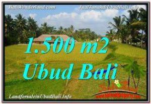 Magnificent 1,500 m2 LAND SALE IN UBUD BALI TJUB668