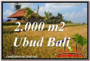 Affordable PROPERTY UBUD LAND FOR SALE TJUB669