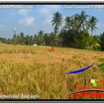 Exotic PROPERTY LAND FOR SALE IN UBUD BALI TJUB669