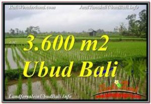 Exotic 3,600 m2 LAND FOR SALE IN UBUD TEGALALANG TJUB673