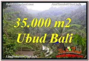Magnificent LAND SALE IN UBUD TJUB674