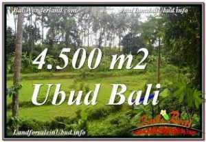 Beautiful 4,500 m2 LAND SALE IN SENTRAL UBUD TJUB675