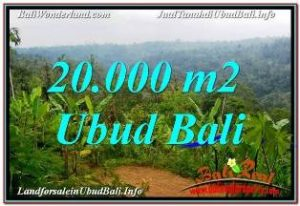 FOR SALE Magnificent PROPERTY LAND IN UBUD BALI TJUB678