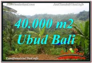 FOR SALE Beautiful PROPERTY 40,000 m2 LAND IN UBUD PAYANGAN BALI TJUB679