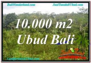 Affordable PROPERTY UBUD LAND FOR SALE TJUB681
