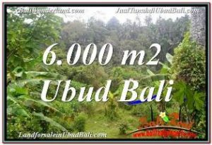 Affordable LAND SALE IN UBUD TEGALALANG BALI TJUB682
