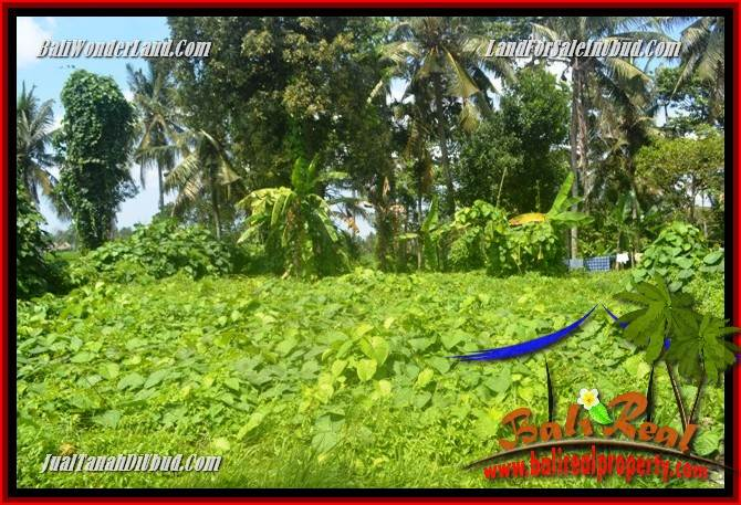 Affordable Ubud Bali 400 m2 Land for sale TJUB684
