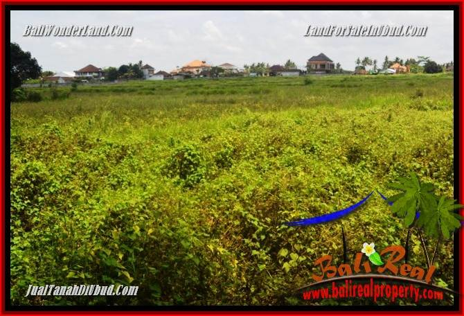 Magnificent Land in Ubud for sale TJUB685