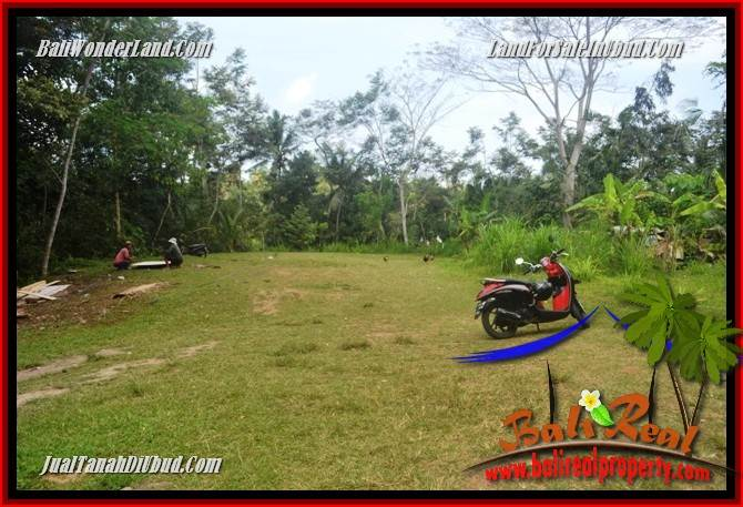 Beautiful 9,400 m2 Land for sale in Ubud Gianyar TJUB686