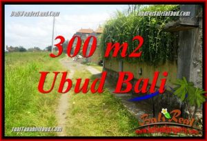 Ubud Bali 300 m2 Land for sale TJUB687