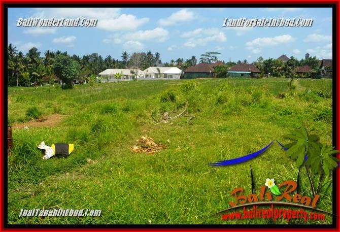 Affordable 5,450 m2 Land sale in Ubud Bali TJUB688