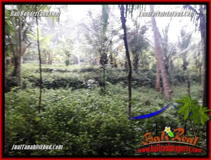 Affordable Land for sale in Ubud TJUB689