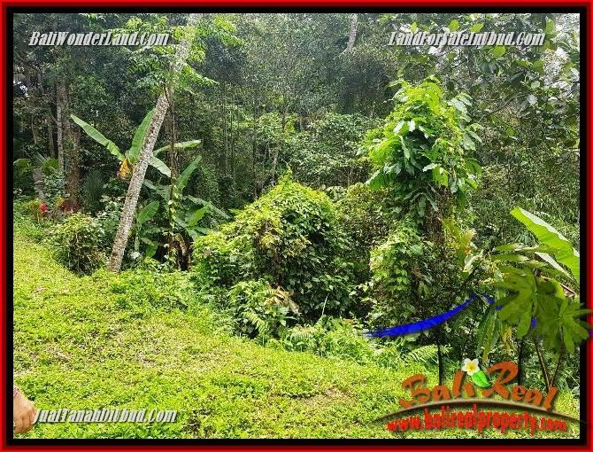 Exotic Property 860 m2 Land sale in Ubud Tegalalang TJUB691