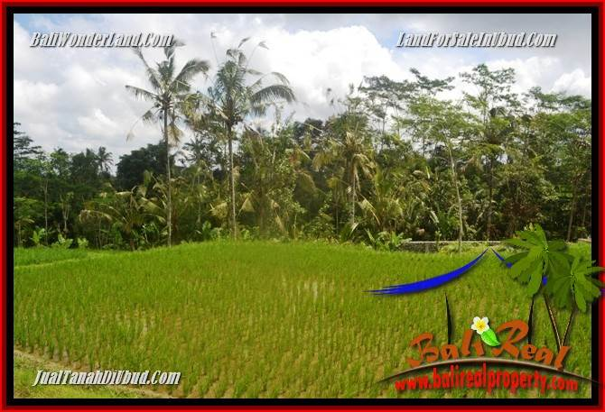 Exotic 1,200 m2 Land for sale in Ubud Tegalalang TJUB693