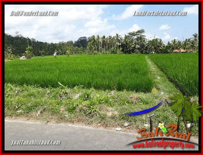 Magnificent Property Land in Ubud Bali for sale TJUB694